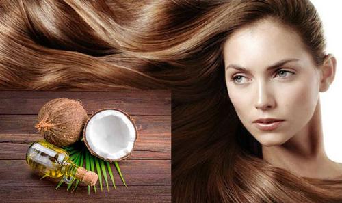 mặt nạ tóc bằng dầu dừa